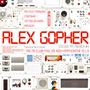 033 Alex Gopher